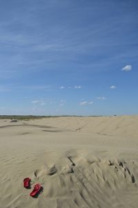 Well worth the hike in the extreme heat - sand as far as the eye can see!