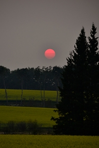 The setting sun resembles a red fire ball as it passes over the rolling hills near Prince Albert Provincial Park, SK, July 2012
