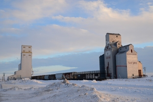 The white storage structures are illuminated, rising tall from surrounding snow drifts. Several grain cars occupy the tracks along main street.