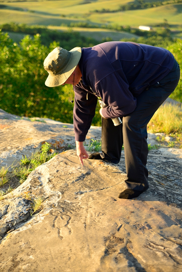 "One hour before sunset David Munro, a ""Friends of St. Victor's Petroglyphs"" guide, unlocked the gate and led the way onto the site for a closer inspection. The sandstone is covered with a combination of natural molds and lichen which aids in locating the individual carvings. The petroglyphs are best viewed just after sunrise or before sunset when shadows cast the light at a particular angle to intensify the markings."