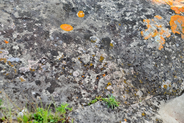 """The outline of a human hand created in a """"pecked style"""" became clearly visible when the light first began to change. Orange colored lichens the size of a dollar coin are speculated to date back approximately 1,000 years. The smaller specks of the same lichen located in the outline of the hand would date between 200 to 400 years."""