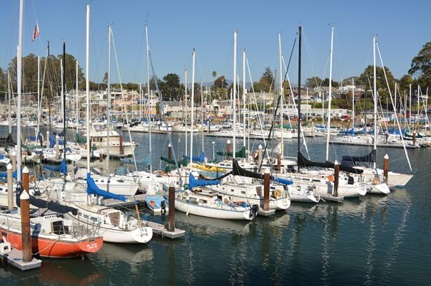10_Santa Cruz Marina