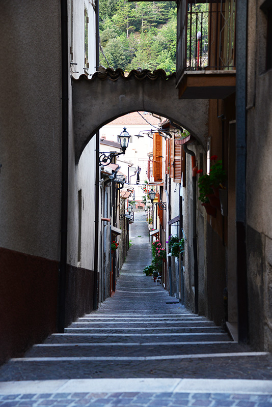 "Small side streets beckon the visitor to explore. Medieval buildings have been well preserved. Italy has implemented a large renovation grant for Italians living overseas and wishing to purchase a home in ""the old country."""
