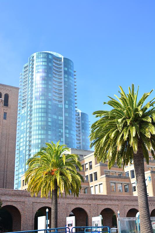 01_Sunny San Francisco