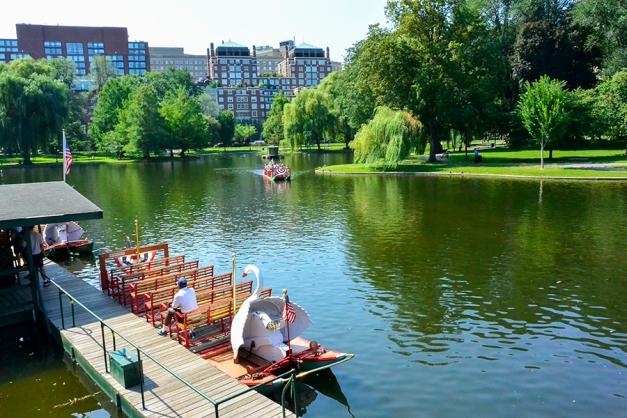Swan boat dock