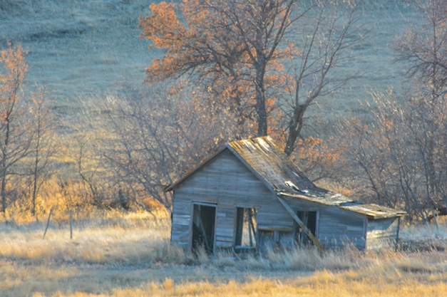 If this Old Shack Could Talk... NikonAW1, Nikkor 28-300mm@300mm, ISO 160, f/8, 1/50s,hand-held.