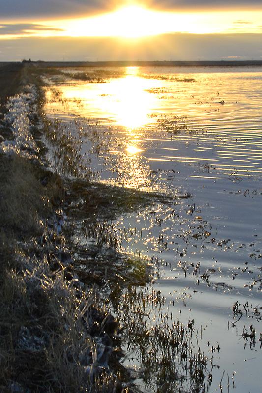 Spring Sunset Nikon D610, Sigma 24-70mm lens, polarizing filter, ISO 400, f25.0. 1/10s, hand-held.