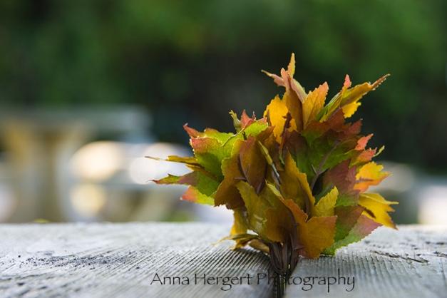 Forgotten Leaves... Robert's Creek, BC Nikon D 610, Nikkor 28-300mm @ 28mm, ISO 200, f/5.6,1/100s, hand-held.