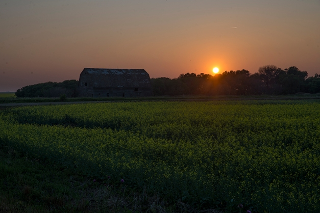 Smokey Prairie Sunset Nikon D610, Sigma 24-70mm@70mm, ISO 100, f/14, 1/100s; tripod aided.
