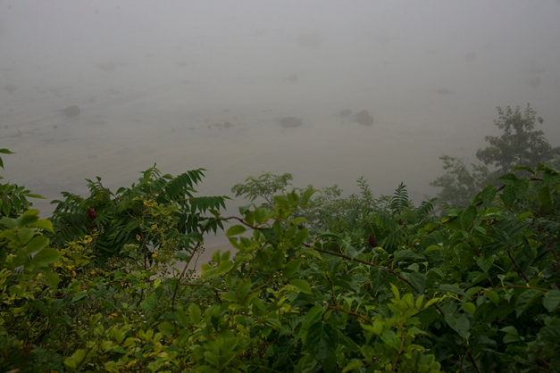 A first peek over the lush banks I can barely make out the water and rocks below...