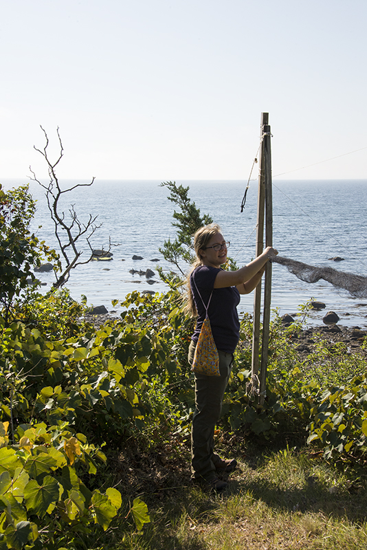 Kayla disabled one of the nets duirng our walk about the property. This net was exposed to direct sunshine and poses a hazard during the hot hours of the day. Fine mesh nets are distributed around the property to capture birds during the day. Birds are most active during the cooler hours of the day, especially during the early morning hours when they wake up and need to feed.