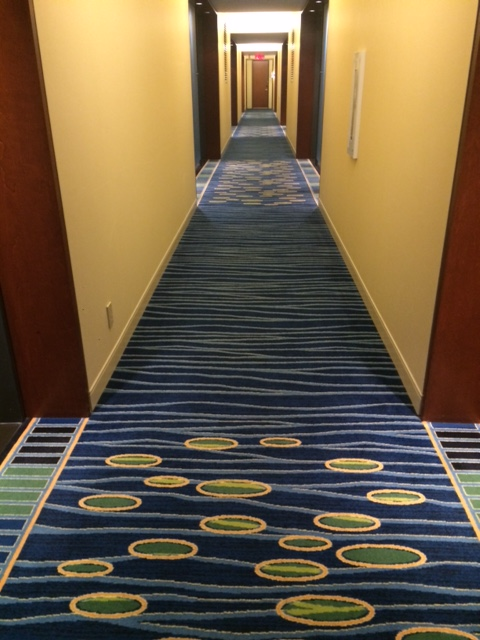 The hallway leading to my room on the 9th floor.