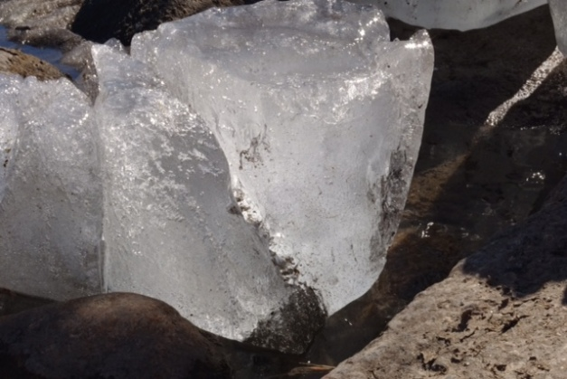 This year I will have to be satisfied with documenting blocks of ice that quickly melt in the warm sunshine.