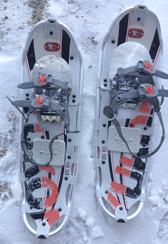 snow-shoes-1