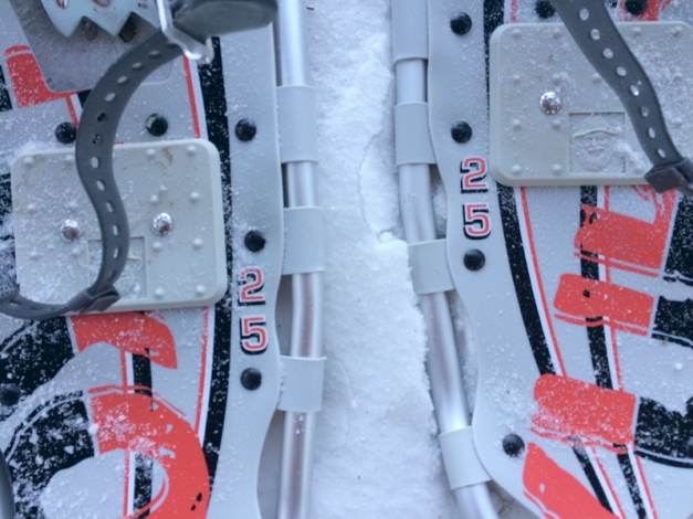 snow-shoes-2