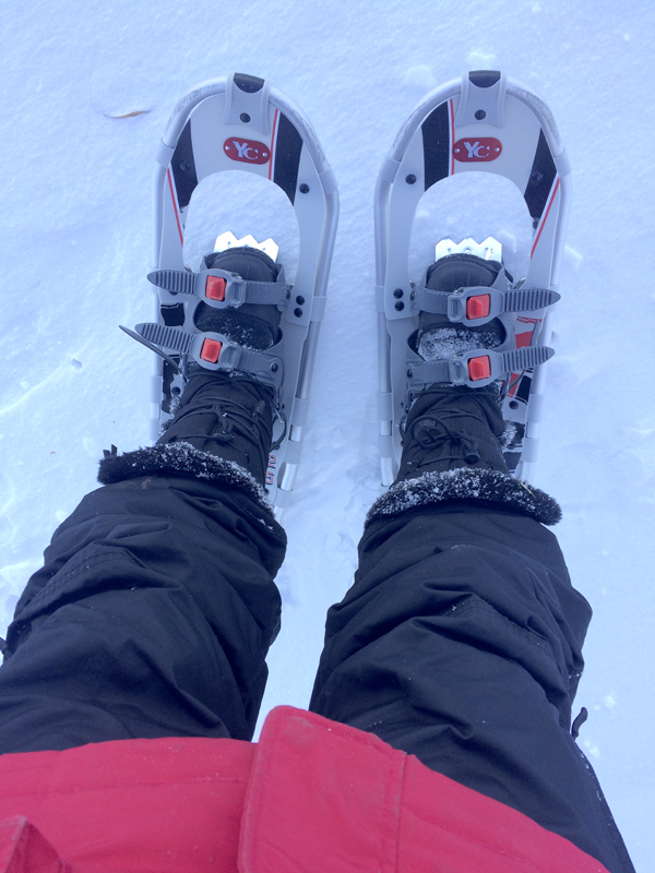 snow-shoes-3a