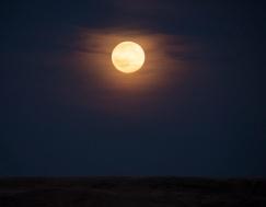 Grasslands Moon Rise 3