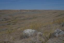 Grasslands vista 1