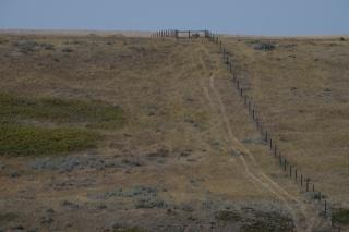 Grasslands Vista 2