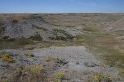 Grasslands Vista 3